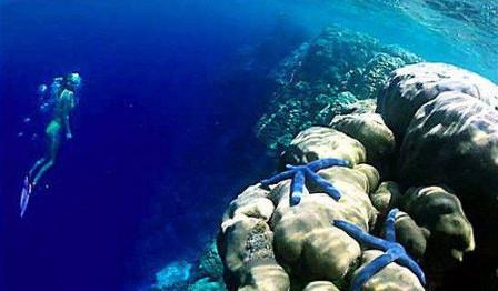 在赤道太平洋向外延伸4000公裏的地方有33个珊瑚岛.