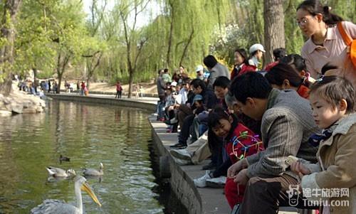 快艇:动物园至北京展览馆快艇20元/人