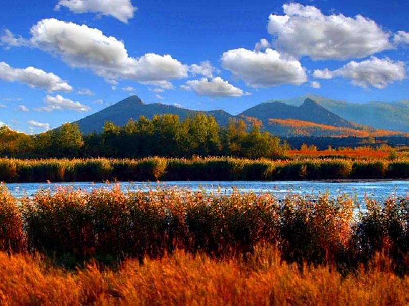 五大连池人口_火山和湖泊,是黑龙江五大连池市旅游特色 旅游频道