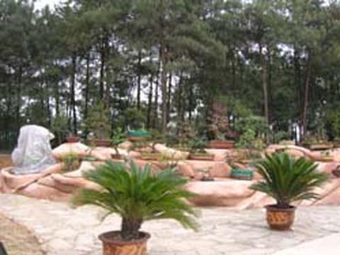 望乡台度假村 望乡台度假村座落在重庆市渝北区风光秀丽...