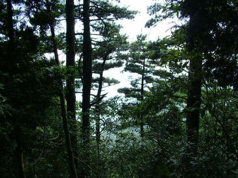 安化县文山村(雪峰山脉中)的照片/益阳/湖南图片