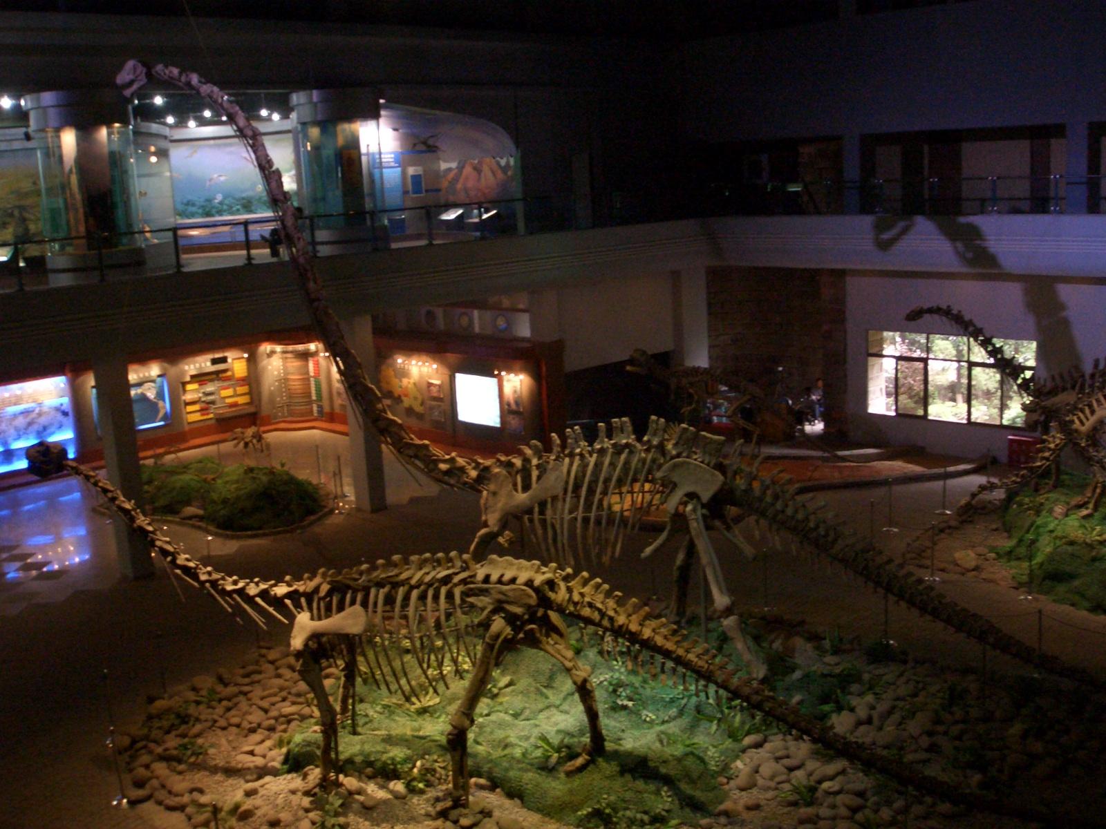 自贡恐龙博物馆 自贡 四川 CIMG0593