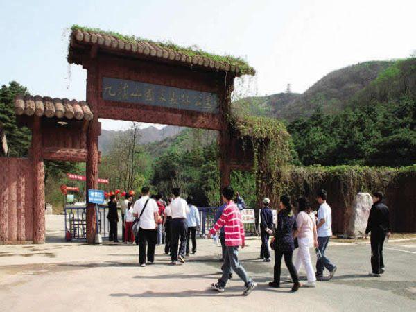 798艺术区  (8)  中国死海  (7)  香江野生动物世界   游览【九龙山