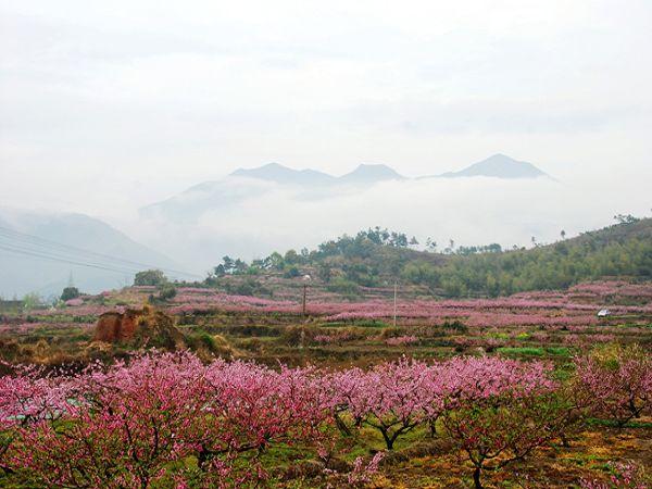 宁海佳田农场-许家山石头村2日>体验乡村风情