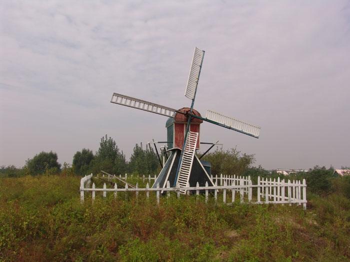 [国庆] 月坨岛汽车2日游>观鸟听涛品海鲜,宿荷兰风情小木屋
