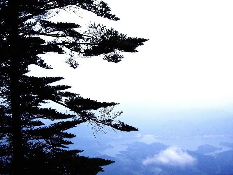 瓦屋山 瓦屋山自然风景区位于袁巷丘陵山区,由五山四湖组成,方圆约30