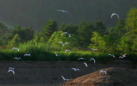 永安溪漂流风光照 - 仙居谷风景区的照片/密云/北京