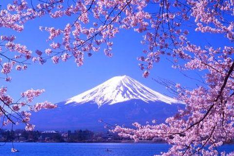 <日本本州6日游>和风物语享游特价,初游日本体验无自费4888起